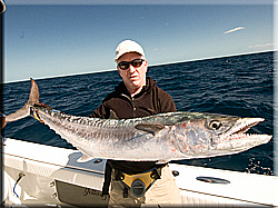 Deep Sea fishing for kingfish